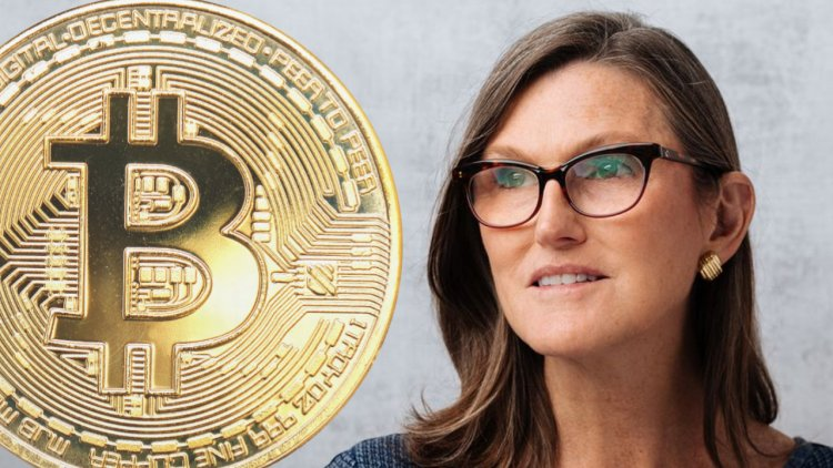 Ark Invest's Cathie Wood Doubles Down on $500K Bitcoin Prediction, Discusses Crypto Regulation